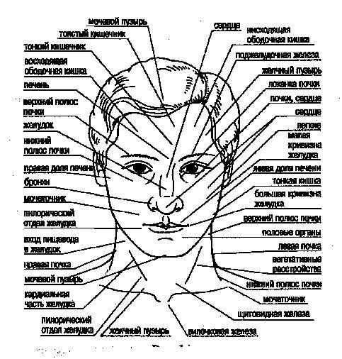 Какие болезни «написаны» на
