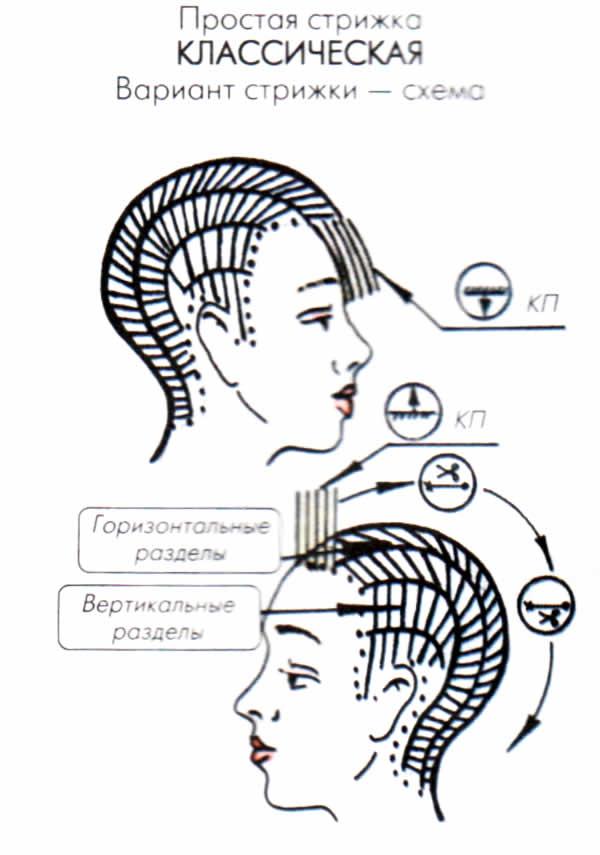 Схема стрижки женской модельной стрижки