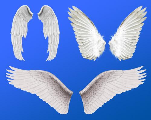 Как в домашних условиях сделать крылья ангела своими руками